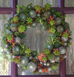 Ucsc Arboretum Holds Annual Gift And Wreath Sale On Nov
