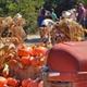 harvest festival scene