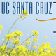 ucsc humanities banner