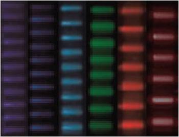 spot-patterns-350.jpg