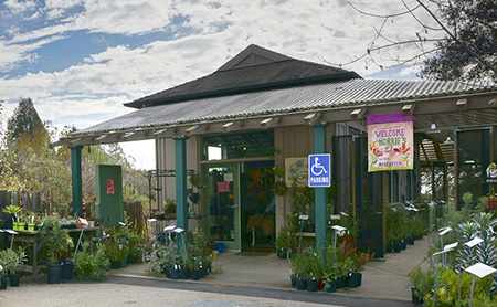 Arboretum gift shop offers December discounts