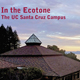 book cover, In the Ecotone by UC Santa Cruz emeriti professor James Clifford