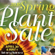 plant sale poster image