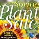 plant sale poster image
