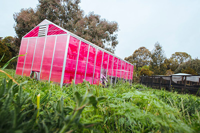 This Solar Greenhouse Could Change The Way We Eat