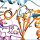 molecular structures of clock proteins