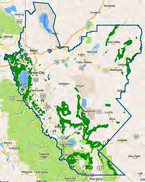Map Of Us Forests Globalinterco - Us cellular coverage interactive map script