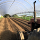 Tractor driving in ag tunnel