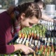 Photo of Elizabeth Davis tending seedlings