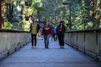 UC Santa Cruz builds strong transfer, frosh applicant pool