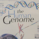 human genome illustration