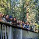Students on a campus bridge