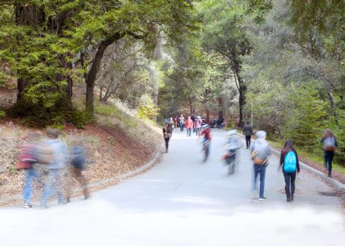 Stellar new faculty strengthen campus research, teaching - UC Santa Cruz