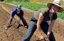 Scholarships for the next generation of organic farmers