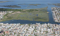 Coastal wetlands cut hurricane property losses