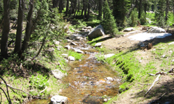 Climate change threatens small mountain streams